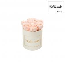 KALLILE EMALE - SMALL KREEMIKASVALGE KARP PEACHY PINK ROOSIDEGA