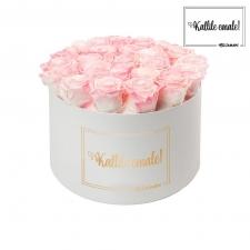 KALLILE EMALE - EXTRA LARGE VALGE KARP LOVELY PINK ROOSIDEGA