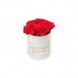 ЛЮБИМОЙ МАМОЧКЕ - MIDI WHITE VELVET BOX WITH VIBRANT RED ROSES