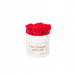 ЛЮБИМОЙ МАМОЧКЕ - SMALL WHITE BOX WITH VIBRANT RED ROSES