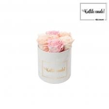 KALLILE EMALE - SMALL VALGE SAMETKARP MIX (ICE PINK, PEACHY PINK, BRIDAL PINK) ROOSIDEGA