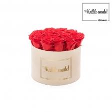 KALLILE EMALE - LARGE (17 ROOSIGA) NUDE SAMETKARP VIBRANT RED ROOSIDEGA