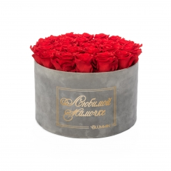 ЛЮБИМОЙ МАМОЧКЕ - EXTRA LARGE LIGHT GREY VELVET BOX WITH VIBRANT RED ROSES