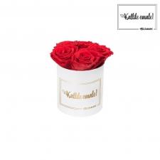 KALLILE EMALE - MIDI VALGE KARP VIBRANT RED ROOSIDEGA