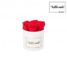 KALLILE EMALE - SMALL VALGE KARP VIBRANT RED ROOSIDEGA