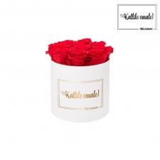 KALLILE EMALE - MEDIUM VALGE KARP VIBRANT RED ROOSIDEGA