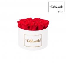 KALLILE EMALE - LARGE (17 ROOSIGA) VALGE KARP VIBRANT RED ROOSIDEGA