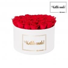 KALLILE EMALE - EXTRA LARGE VALGE KARP VIBRANT RED ROOSIDEGA