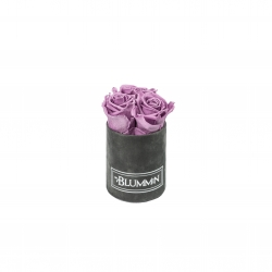XS BLUMMiN - DARK GREY VELVET BOX WITH LILAC ROSES