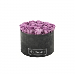 LARGE BLUMMiN - DARK GREY VELVET BOX WITH LILAC ROSES