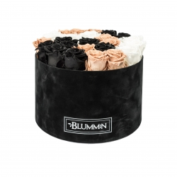 XL BLUMMiN - BLACK VELVET BOX WITH MIX ROSES