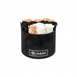 LARGE BLUMMiN - BLACK VELVET BOX WITH MIX ROSES