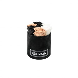 SMALL BLUMMiN - BLACK VELVET BOX WITH MIX ROSES