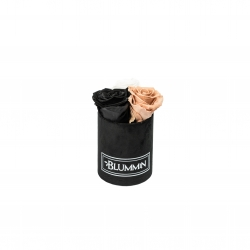 XS BLUMMiN - BLACK VELVET BOX WITH MIX ROSES