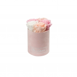 MIDI BLUMMiN - LIGHT PINK VELVET BOX WITH MIX ROSES