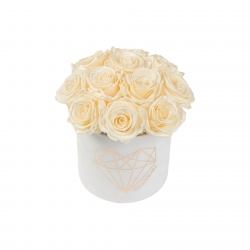 BOUQUET WITH 11 ROSES - SMALL LOVE WHITE VELVET BOX WITH PEARL CHAMPAGNE AND CHAMPAGNE ROSES