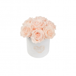 BOUQUET  WITH 7 ROSES - MIDI LOVE WHITE VELVET BOX WITH ICE PINK ROSES