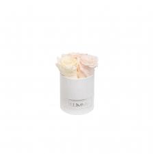 -20% XS BLUMMiN VALGE SAMETKARP MIX (ICE PINK, PEACHY PINK, CHAMPAGNE) ROOSIDEGA