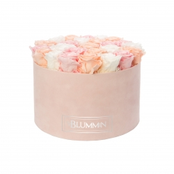 EXTRA LARGE BLUMMIN LIGHT PINK VELVET BOX WITH MIX ROSES