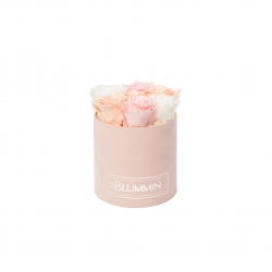SMALL VELVET LIGHT PINK BOX WITH MIX ROSES