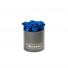SMALL CLASSIC DARK GREY BOX WITH OCEAN BLUE ROSES