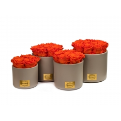 BEIGE CERAMIC POT WITH ORANGE ROSES