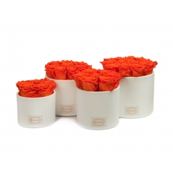 WHITE CERAMIC POT WITH ORANGE ROSES
