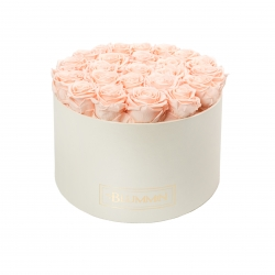 EXTRA LARGE BLUMMiN CREAM BOX WITH PEACHY PINK ROSES