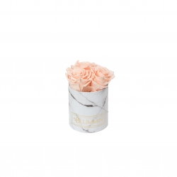 XS WHITE MARBLE BOX WITH PEACHY PINK ROSES