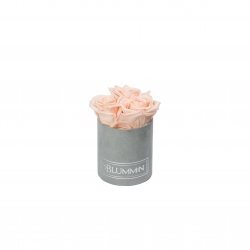XS LIGHT GREY VELVET BOX WITH PEACHY PINK ROSES