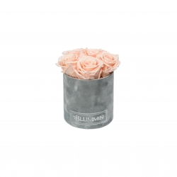BLUMMIN MIDI LIGHT GREY VELVET BOX PEACHY PINK ROSES