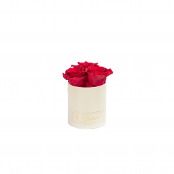 XS BLUMMiN - CREAM BOX WITH ROSEBERRY ROSES