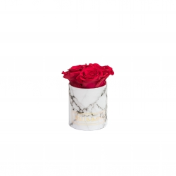 XS WHITE MARBLE BOX WITH ROSEBERRY ROSES