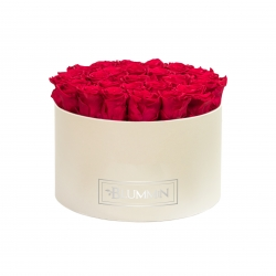 EXTRA LARGE CREAM BOX WITH ROSEBERRY ROSES