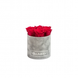 SMALL LIGHT GREY VELVET BOX WITH ROSEBERRY ROSES