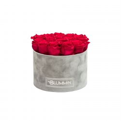 LARGE LIGHT GREY VELVET BOX WITH ROSEBERRY ROSES