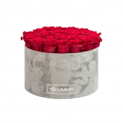 EXTRA LARGE LIGHT GREY VELVET BOX WITH ROSEBERRY ROSES