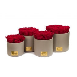 BEIGE CERAMIC POT WITH ROSEBERRY ROSES