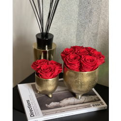 GOLDEN CERAMIC POT WITH VIBRANT RED ROSES