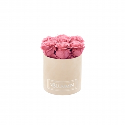 SMALL VELVET NUDE BOX WITH VINTAGE PINK ROSES