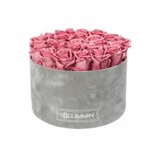 XL BLUMMiN helehall sametkarp VINTAGE PINK uinuvate roosidega