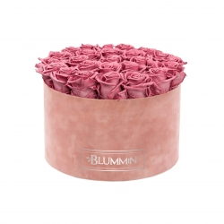 EXTRA LARGE BLUMMiN OLD PINK VELVET BOX WITH VINTAGE PINK ROSES