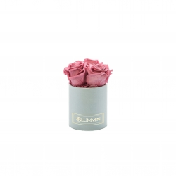 XS BLUMMIN - LIGHT GREY BOX WITH VINTAGE PINK ROSES