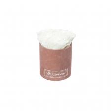 MIDI BLUMMiN - OLD PINK VELVET BOX WITH WHITE ROSES