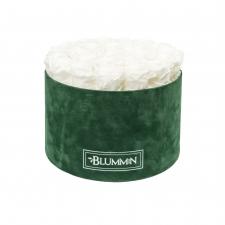 EXTRA LARGE BLUMMiN - roheline sametkarp WHITE uinuvate roosidega