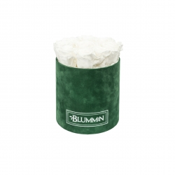 MEDIUM BLUMMiN - GREEN VELVET BOX WITH WHITE ROSES