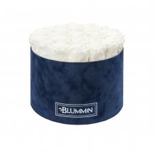 XL BLUMMiN - DARK BLUE VELVET BOX WITH WHITE ROSES