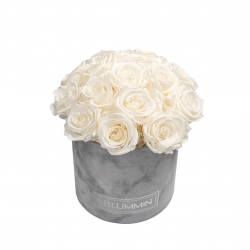 BOUQUET WITH 15 ROSES - MEDIUM LIGHT GREY VELVET BOX WITH WHITE ROSES