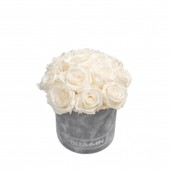 BOUQUET WITH 11 ROSES - SMALL LIGHT GREY VELVET BOX WITH WHITE ROSES
