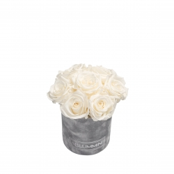 BOUQUET WITH 7 ROSES - MIDI LIGHT GREY VELVET BOX WITH WHITE ROSES